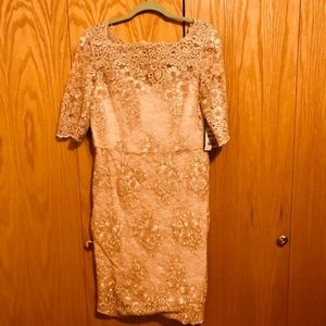 Tahari ASL lush pink lace sequin Dress 315
